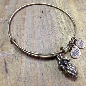 Alex and Ani Pineapple Charm Bracelet Authentic